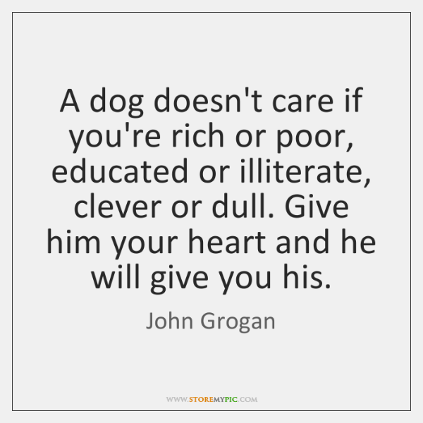 A dog doesn't care if you're rich or poor, educated or illiterate, ...