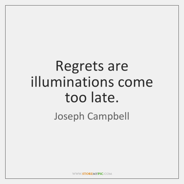 Regrets are illuminations come too late.
