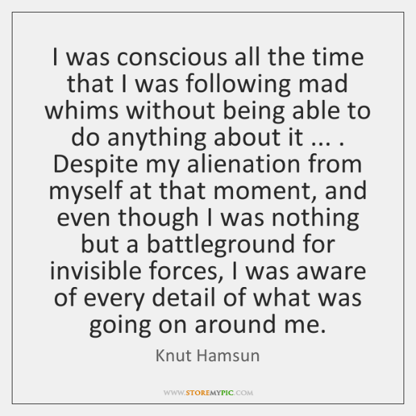 I was conscious all the time that I was following mad whims ...