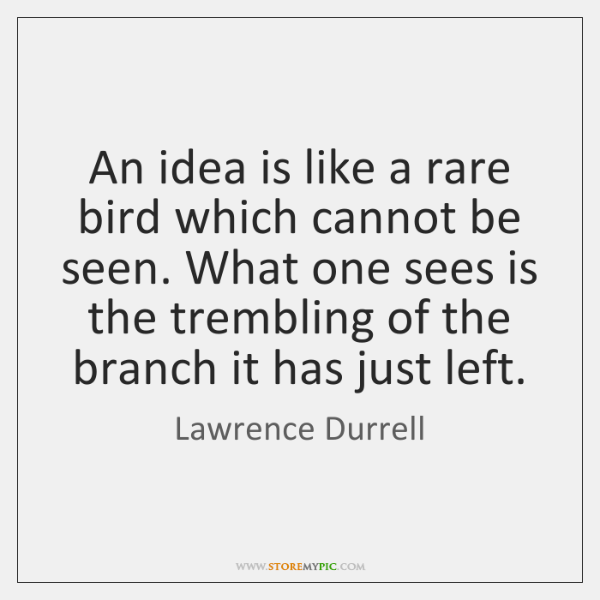 An idea is like a rare bird which cannot be seen. What ...