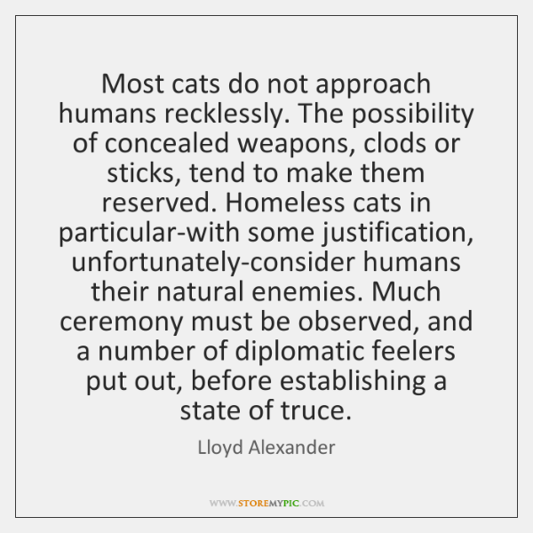 Most cats do not approach humans recklessly. The possibility of concealed weapons, ...