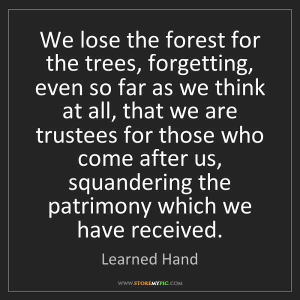 Learned Hand: We lose the forest for the trees, forgetting, even so...