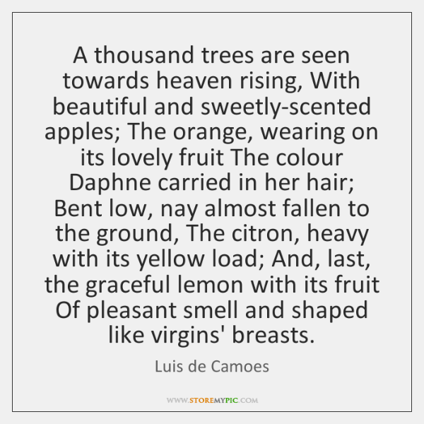A thousand trees are seen towards heaven rising, With beautiful and sweetly-scented ...