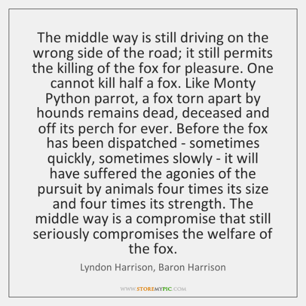 The middle way is still driving on the wrong side of the ...
