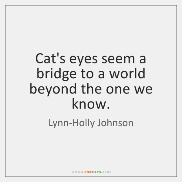 Cat's eyes seem a bridge to a world beyond the one we ...