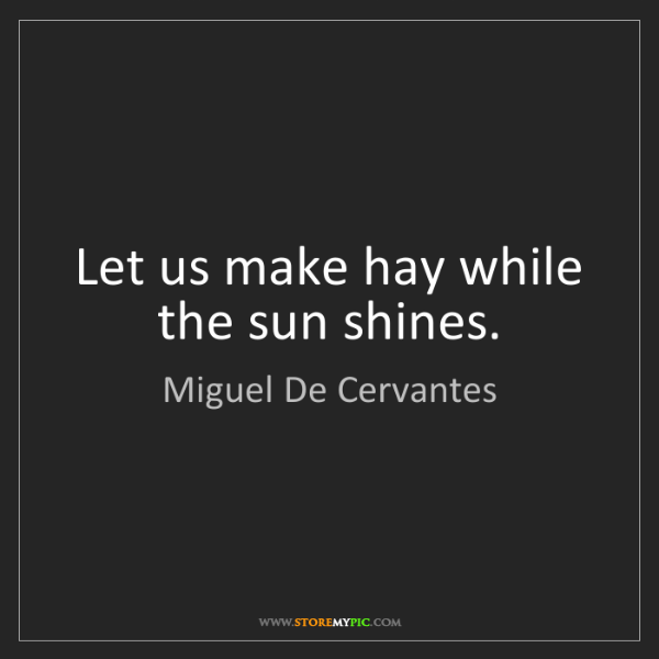 Miguel De Cervantes: Let us make hay while the sun shines.