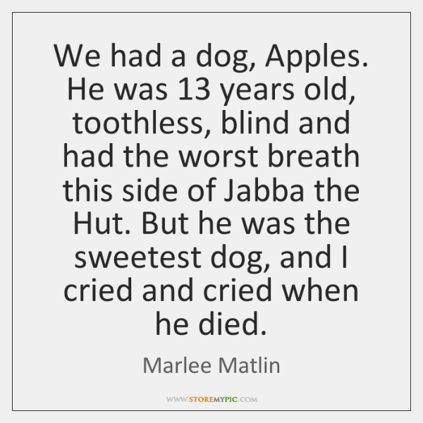 We had a dog, Apples. He was 13 years old, toothless, blind and ...