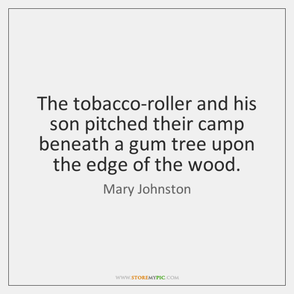 The tobacco-roller and his son pitched their camp beneath a gum tree ...