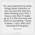 mary-oliver-its-very-important-to-write-things-down-quote-in-storemypic-2deb2