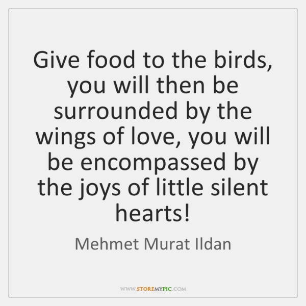 Give food to the birds, you will then be surrounded by the ...