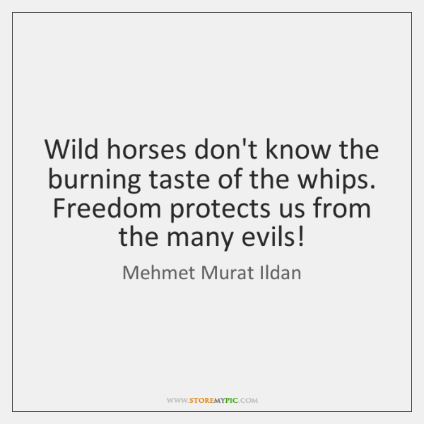 Wild horses don't know the burning taste of the whips. Freedom protects ...