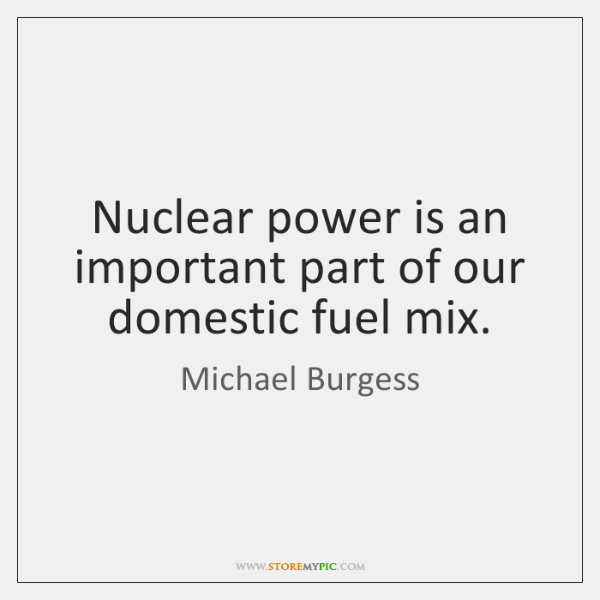 Nuclear power is an important part of our domestic fuel mix.