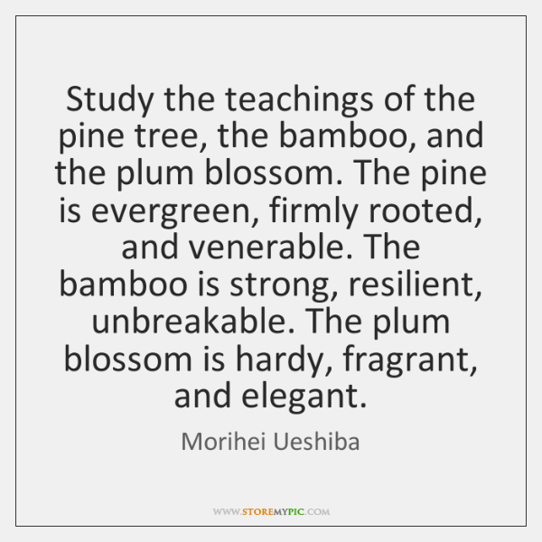 Study the teachings of the pine tree, the bamboo, and the plum ...