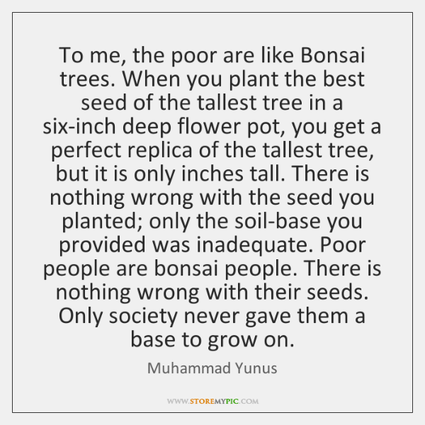 To me, the poor are like Bonsai trees. When you plant the ...