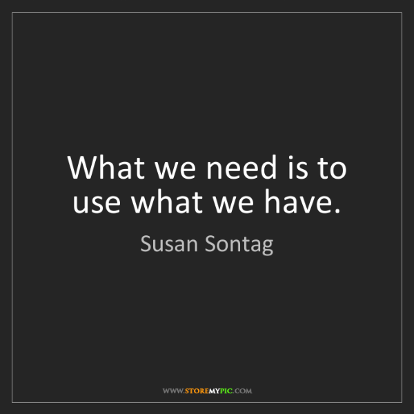Susan Sontag: What we need is to use what we have.