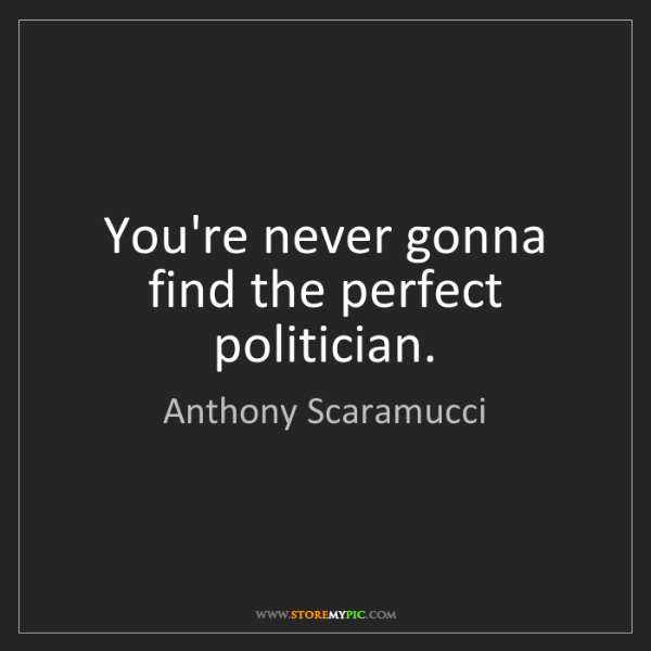 Anthony Scaramucci: You're never gonna find the perfect politician.