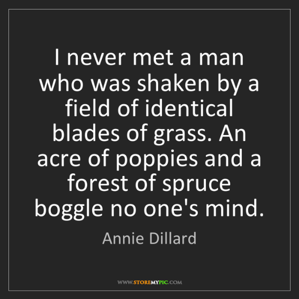 Annie Dillard: I never met a man who was shaken by a field of identical...