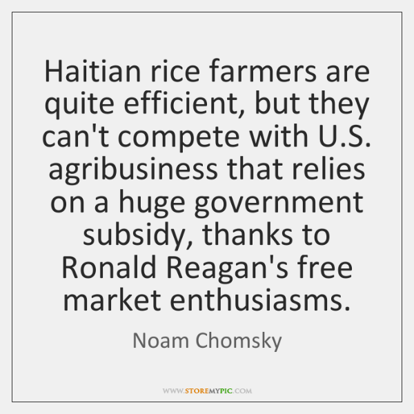 Haitian rice farmers are quite efficient, but they can't compete with U....