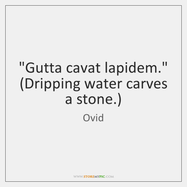 """Gutta cavat lapidem."" (Dripping water carves a stone.)"