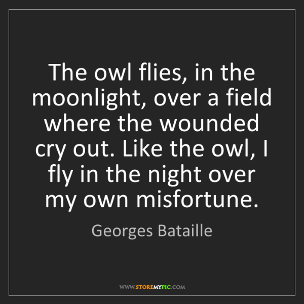 Georges Bataille: The owl flies, in the moonlight, over a field where the...