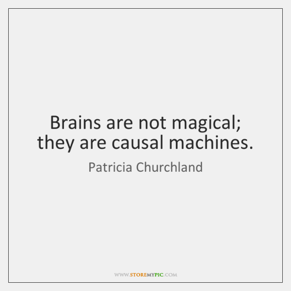 Brains are not magical; they are causal machines.