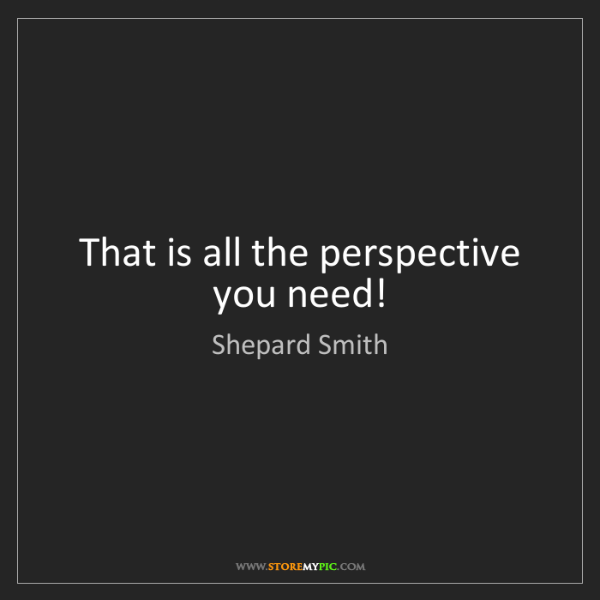 Shepard Smith: That is all the perspective you need!