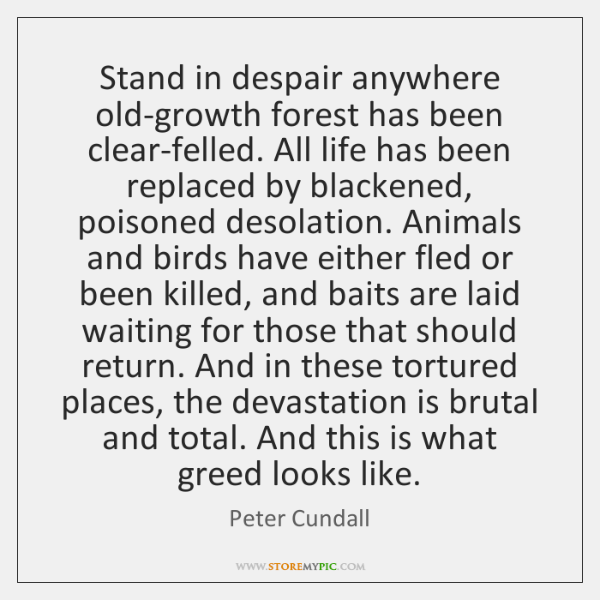 Stand in despair anywhere old-growth forest has been clear-felled. All life has ...