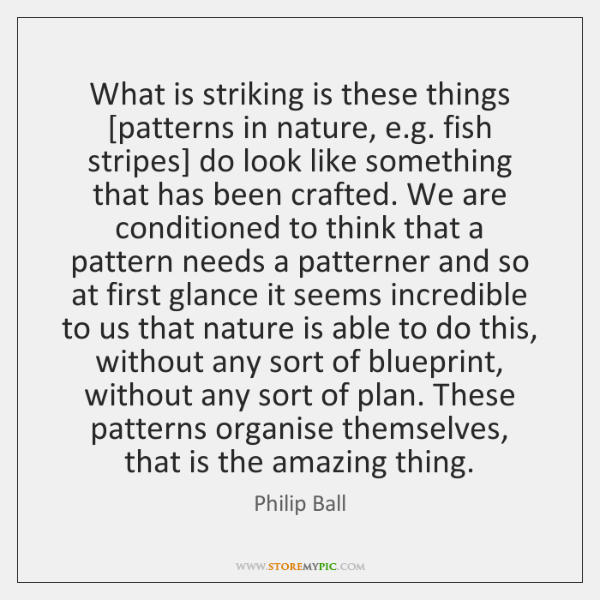 What is striking is these things [patterns in nature, e.g. fish ...