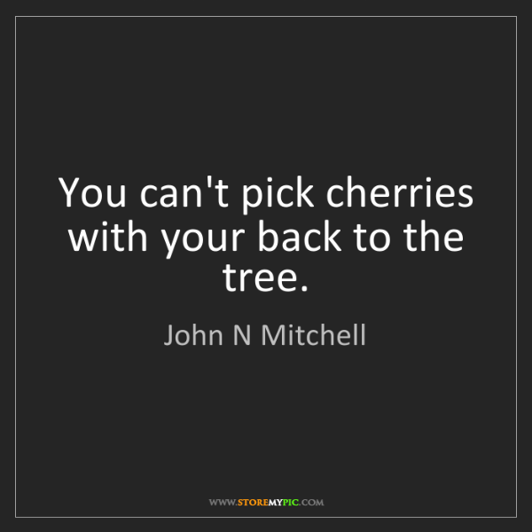 John N Mitchell: You can't pick cherries with your back to the tree.
