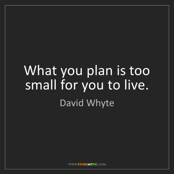 David Whyte: What you plan is too small for you to live.