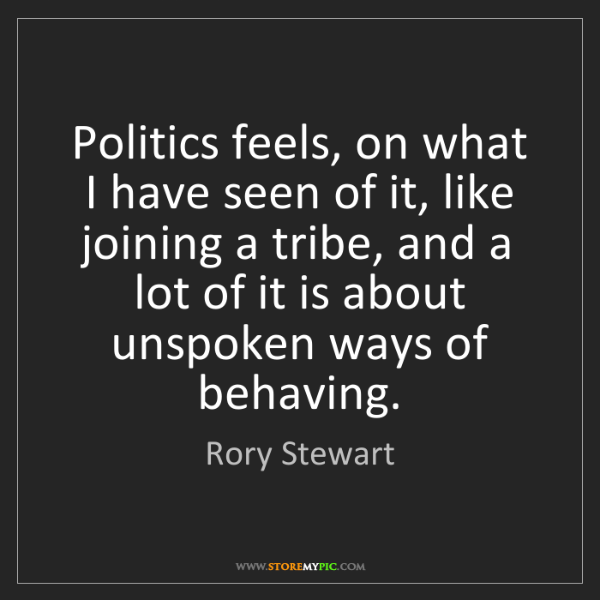 Rory Stewart: Politics feels, on what I have seen of it, like joining...