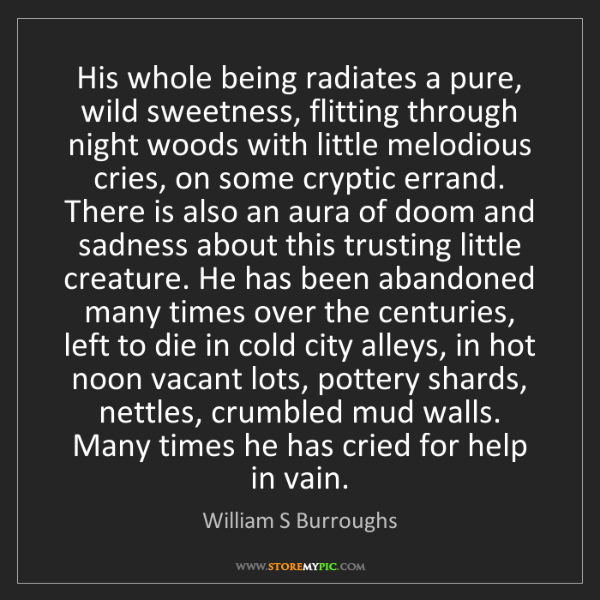 William S Burroughs: His whole being radiates a pure, wild sweetness, flitting...