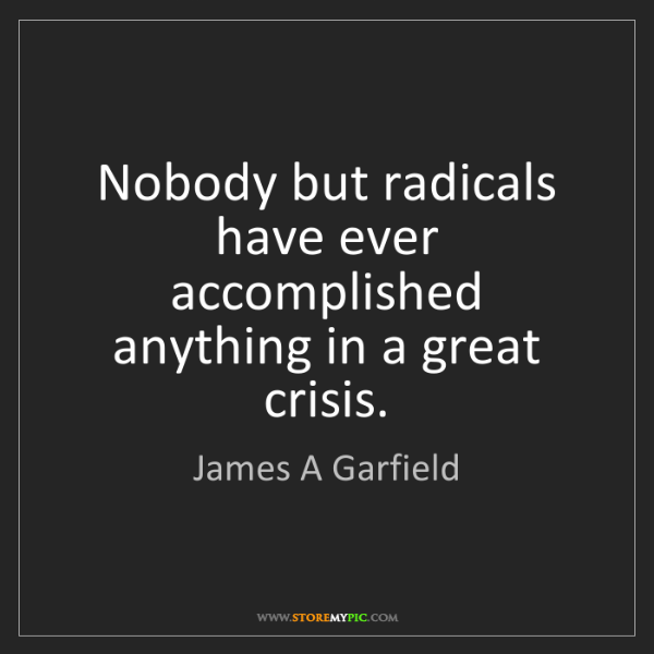 James A Garfield: Nobody but radicals have ever accomplished anything in...