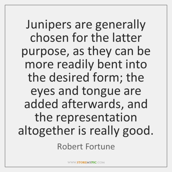 Junipers are generally chosen for the latter purpose, as they can be ...