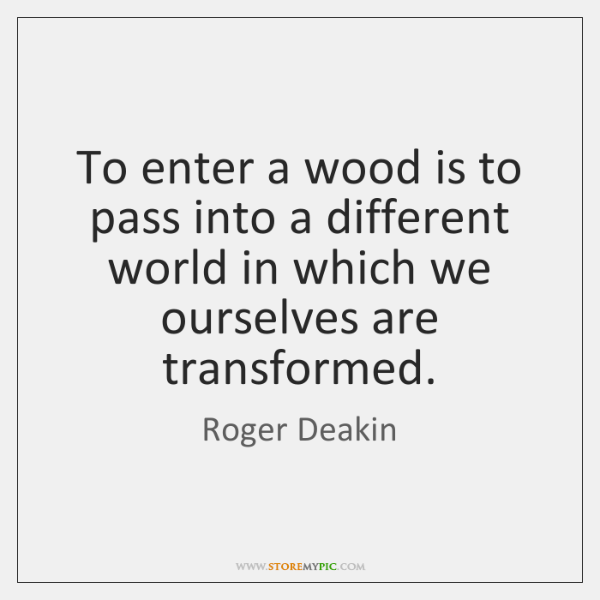 To enter a wood is to pass into a different world in ...