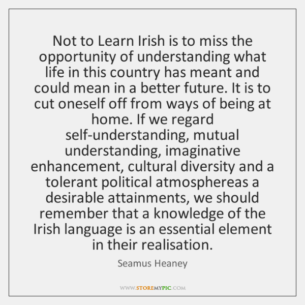 Not to Learn Irish is to miss the opportunity of understanding what ...