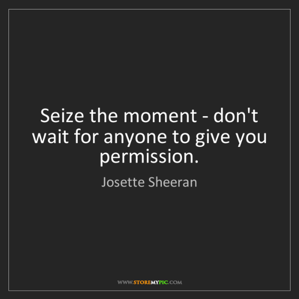 Josette Sheeran: Seize the moment - don't wait for anyone to give you...
