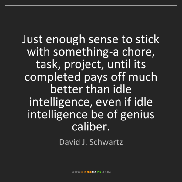David J. Schwartz: Just enough sense to stick with something-a chore, task,...