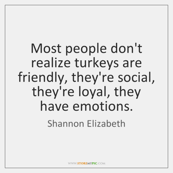 Most people don't realize turkeys are friendly, they're social, they're loyal, they ...