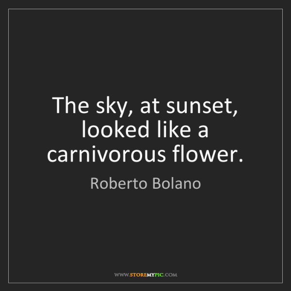 Roberto Bolano: The sky, at sunset, looked like a carnivorous flower.