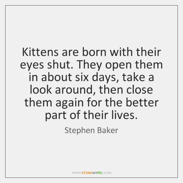 Kittens are born with their eyes shut. They open them in about ...
