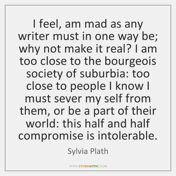 I feel, am mad as any writer must in one way be; ...