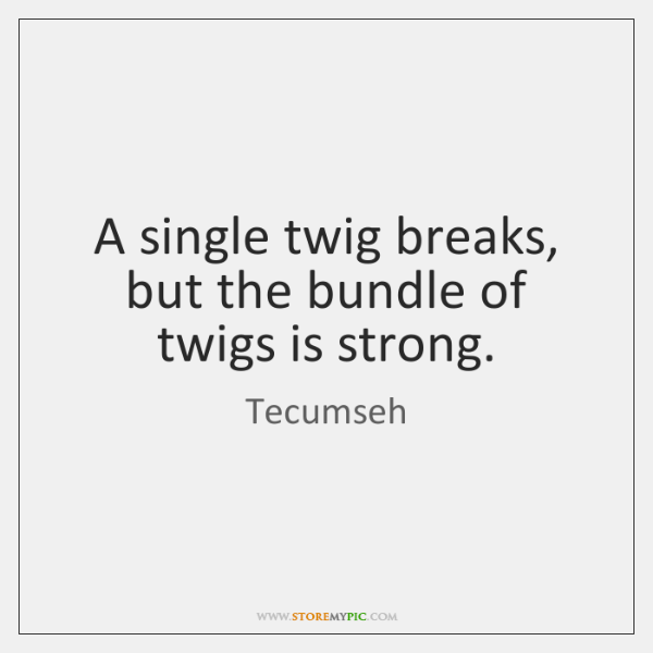 A single twig breaks, but the bundle of twigs is strong.