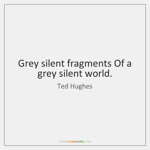 Grey silent fragments Of a grey silent world.