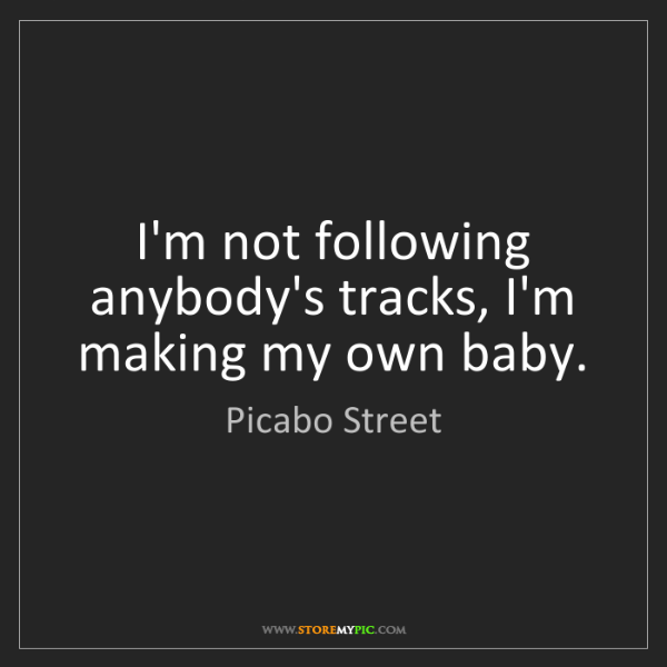 Picabo Street: I'm not following anybody's tracks, I'm making my own...