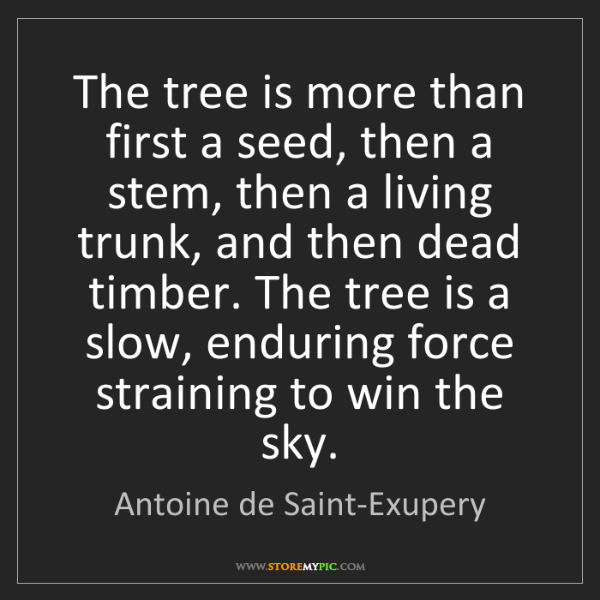 Antoine de Saint-Exupery: The tree is more than first a seed, then a stem, then...