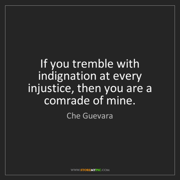 Che Guevara: If you tremble with indignation at every injustice, then...