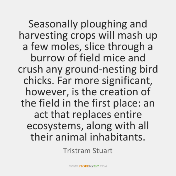 Seasonally ploughing and harvesting crops will mash up a few moles, slice ...
