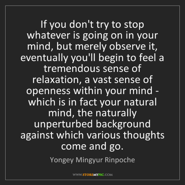 Yongey Mingyur Rinpoche: If you don't try to stop whatever is going on in your...