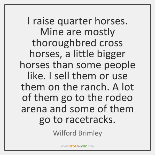 I raise quarter horses. Mine are mostly thoroughbred cross horses, a little ...